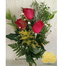 Rosas Delicadas